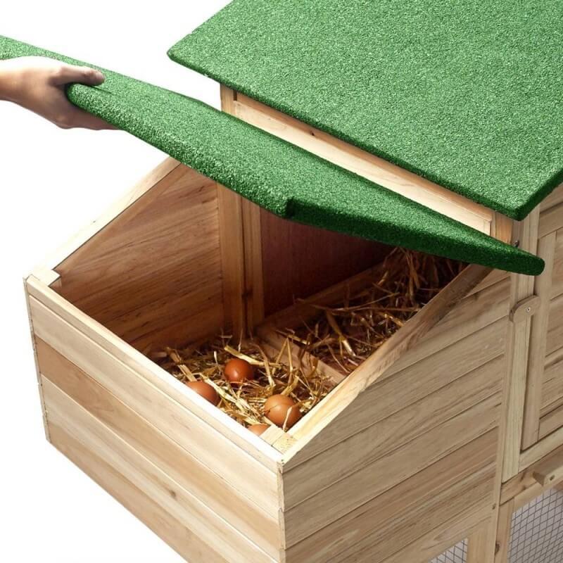 Poulailler bois avec pondoir (6)