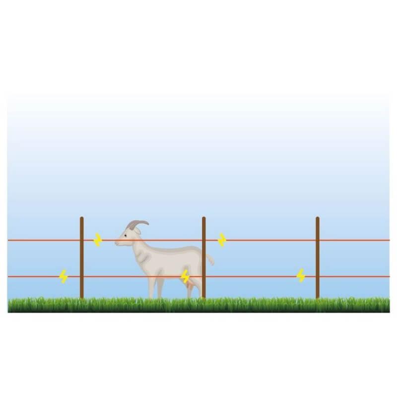 Fil pour clôture électrique 250 m (1)