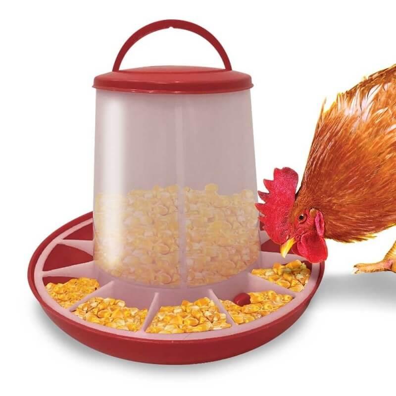 Mangeoire pour poules (1)