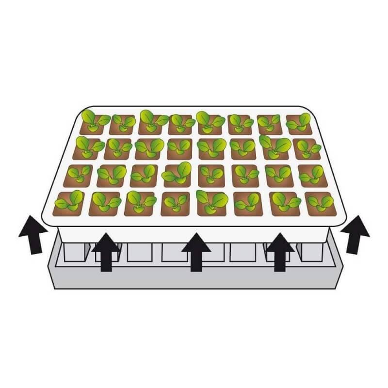 Kit de germination pour semis (4)