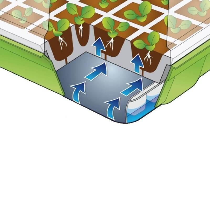 Kit de germination pour semis (5)