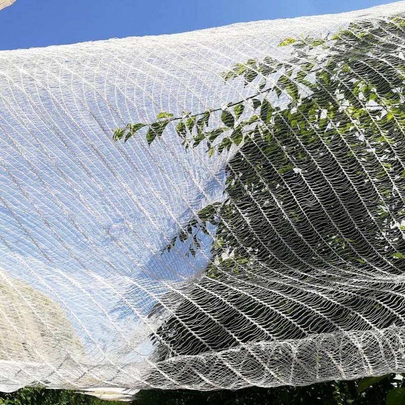 Filet anti oiseaux 3x10 m (1)