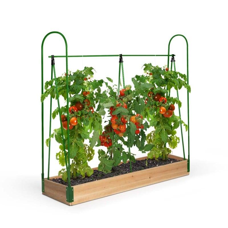Serre potager pour tomates (2)