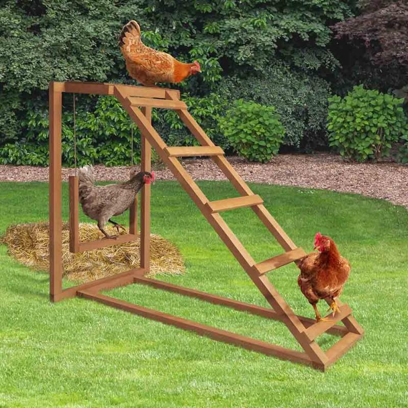 Aire de jeux pour poules (4)