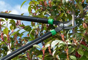 Quels outils de jardinage permettent de tailler une haie ou un arbuste