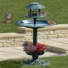 Comment une vasque oiseaux peut elle embellir votre jardin for Vasque exterieure pour jardin